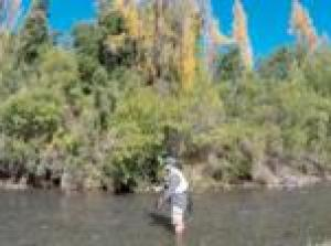 Fly Fishing Tours near Santiago