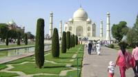 Agra Full-day Local Tour with Taj Mahal, Agra Fort and Mehtab Bagh