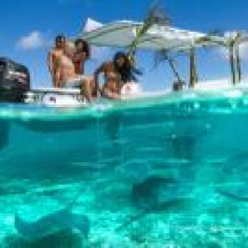Bora Bora Bora Bora Small-Group Bora Bora Lagoon Snorkel Cruise with Barbecue Island Lunch 6964EXCLUSIVE