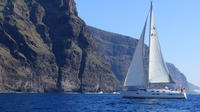 Los Gigantes Whale Watching Charter by Sail Boat