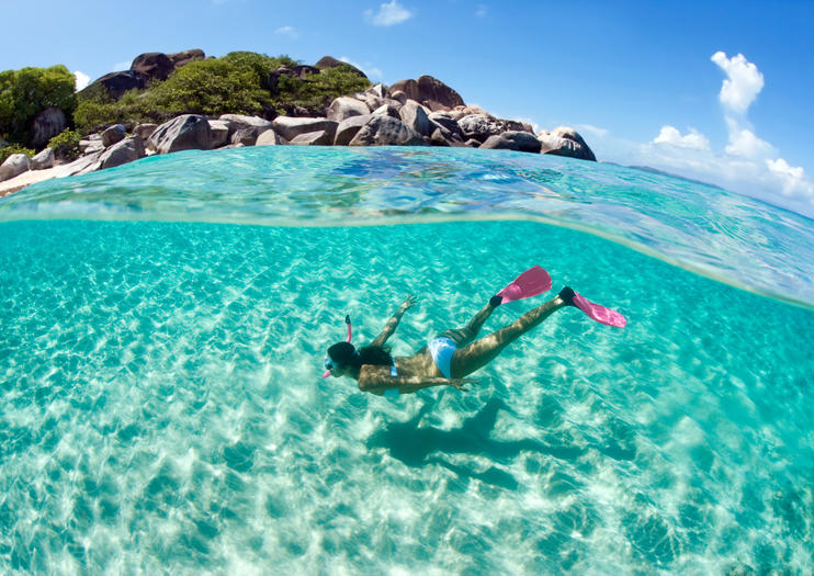 top snorkeling and scuba