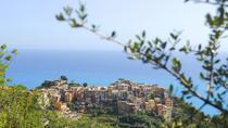 Pesto course in Cinque Terre with Boat Trip and Lunch from La Spezia, Cinque Terre, Day Cruises
