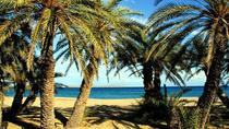 The palm forest of Vai - Adventure Tour, Elounda, 4WD, ATV & Off-Road Tours
