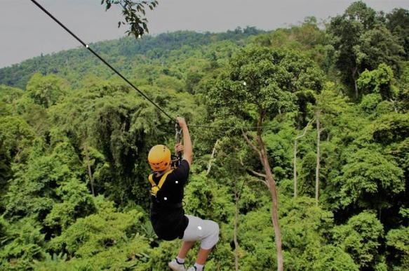 Image result for flight of the gibbon pattaya