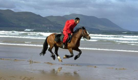 The Clonshire Equestrian Centre in Adare, Ireland, wants you to be able to take the reins and horse around on vacation.
