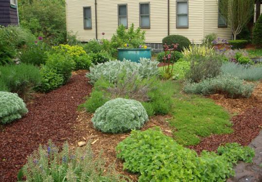 Grassfree yard options  The Boston Globe