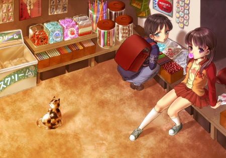 Cute Kitten Wallpaper Free Candy Shop Other Amp Anime Background Wallpapers On