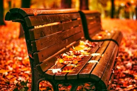 Fall Leaves Desktop Wallpaper Free October Other Amp Nature Background Wallpapers On Desktop