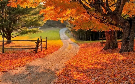 Golf Course Fall Season Wallpaper Pc Autumn Countryside Road Other Amp Nature Background