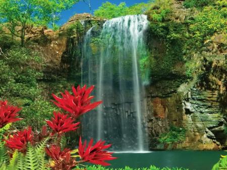 Free Wallpaper Fall Flowers Exotic Waterfall Waterfalls Amp Nature Background
