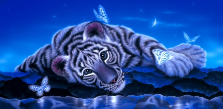 White baby tiger  Fantasy  Abstract Background