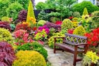 Beautiful flower garden for relaxing - Flowers & Nature ...
