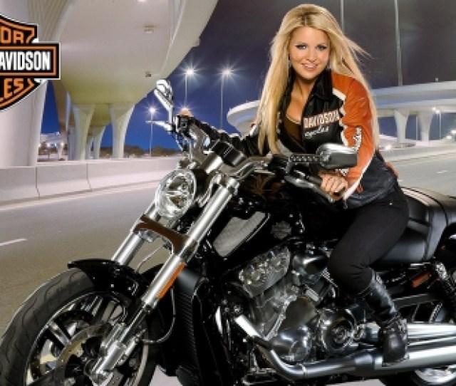 Harley Biker Babe Hd Bike Sexy Blonde