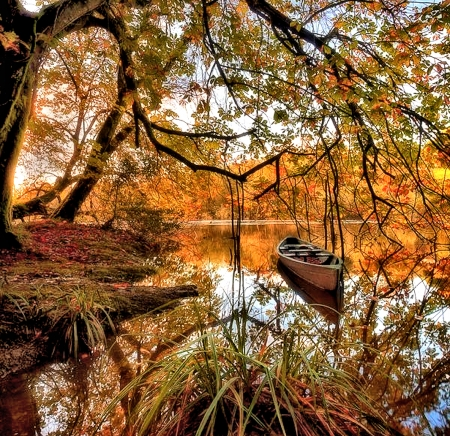 Ireland Fall Wallpaper Kilkenny Ireland Other Amp Nature Background Wallpapers