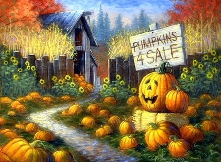Hd Wallpaper Texture Fall Harvest Pumpkin Patch Fields Amp Nature Background Wallpapers On