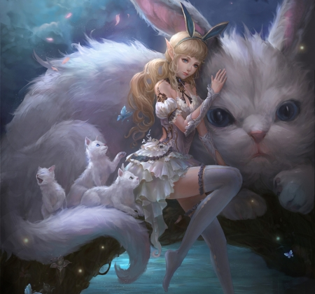 Beautiful Cute Girl Desktop Wallpaper Cat Girl Fantasy Amp Abstract Background Wallpapers On