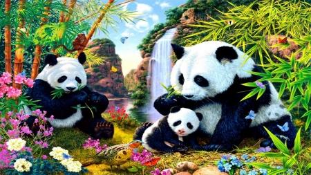 Cute Cartoon Bears Wallpaper Panda Bears Family Bears Amp Animals Background Wallpapers