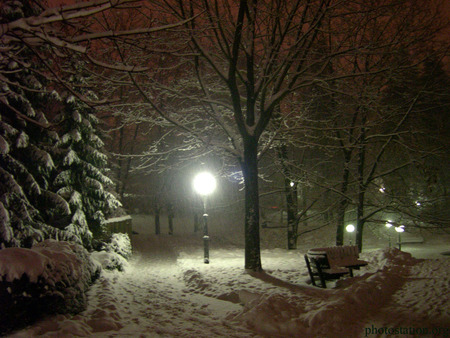 Snow Falling Wallpapers Free Download Silent Night Winter Amp Nature Background Wallpapers On