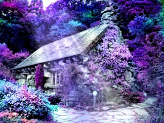 forest purple charmed flowers background pink forests desktop fantasy cool lavender hd houses wallpapers visitar desktopnexus