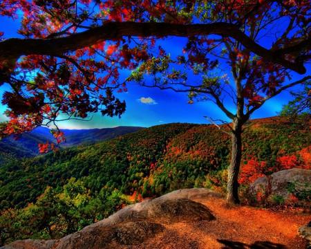 brilliant vibrant colors landscape