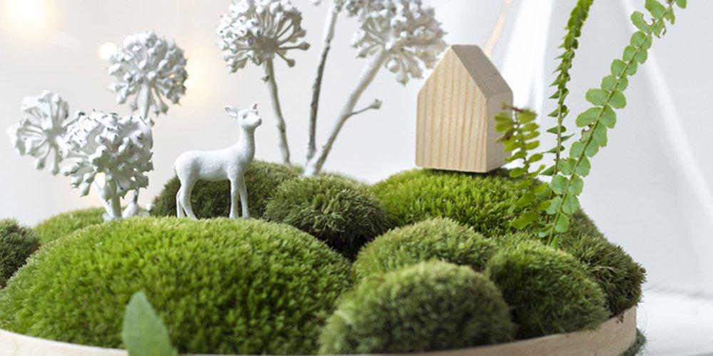 Dcoration De Table Faire Un Paysage Miniature Avec De