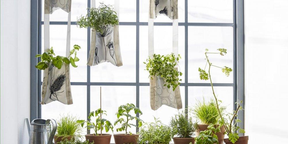 plantes suspendues un diy ikea pour