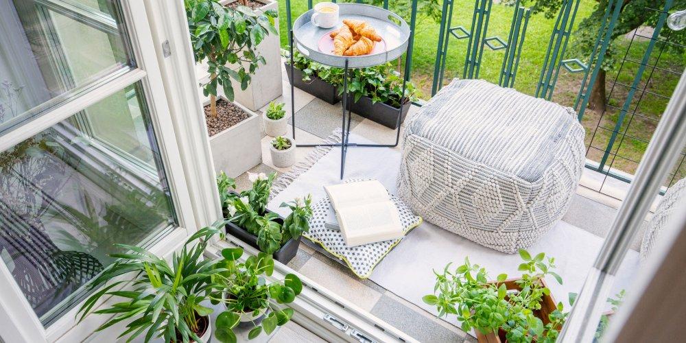 plantes pour balcon oriente nord