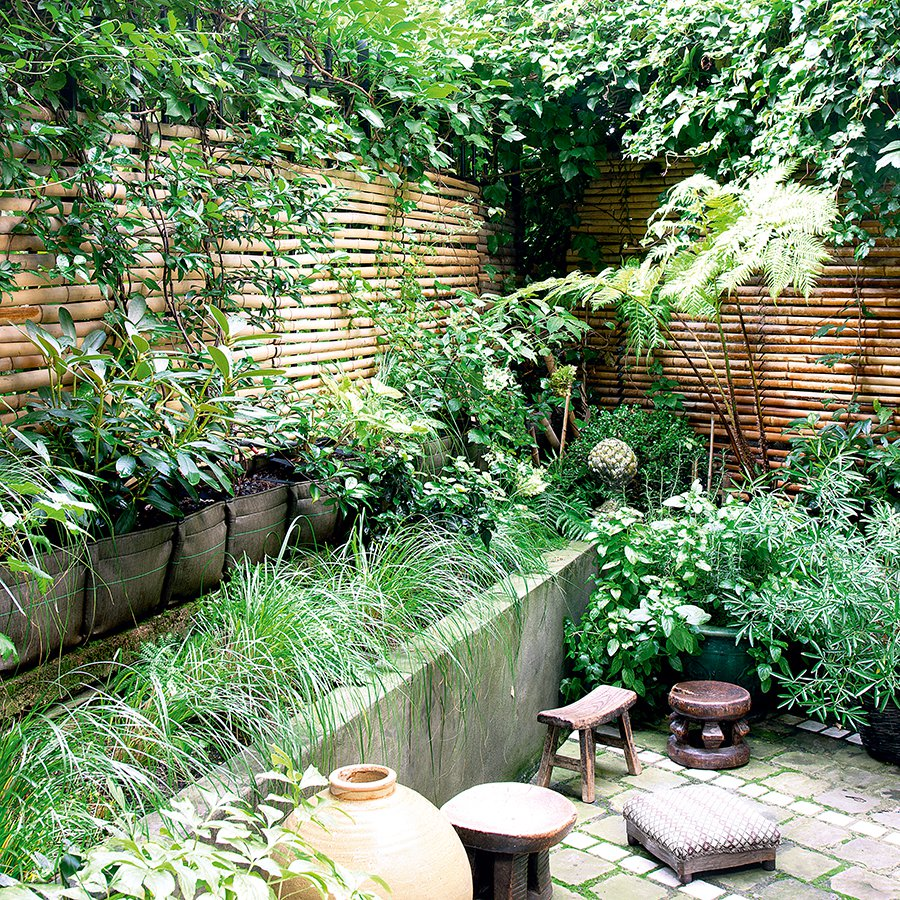 un jardin 100 green comme une jungle