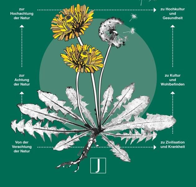 Die Pflanze unsere Lehrmeisterin  Neues Buch von Dr h