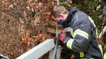 FW Celle: Eichhörnchen aus misslicher Lage befreit - Celler Feuerwehr befreit Eichhörnchen aus zwei Meter hohem Zaunpfahl