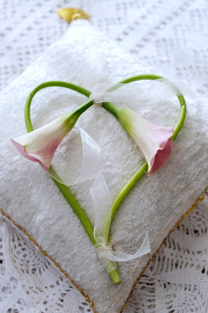 Ja ich will Heiraten mit der Hochzeitblume Calla BILD  Presseportal