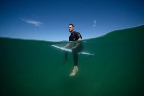"""""""Hai Life"""" im Juli – National Geographic WILD geht einen Monat lang auf Tauchfühlung mit den faszinierenden Meeresjägern"""