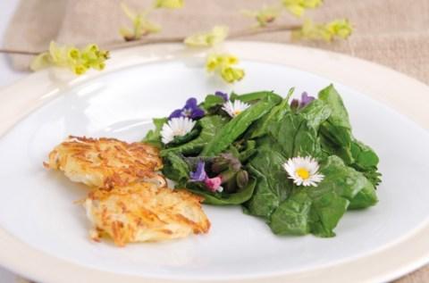 Gesunde Kost: Kräuter-Know-how aus dem Kloster