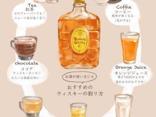 これは試したい!お酒が弱くてもウイスキーが美味しく飲める割り方