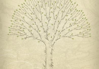 Ideas About Tree Templates On Pinterest Family