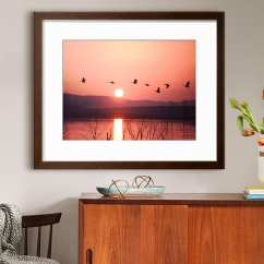 Framed Wall Art For Living Room Floor Lights Com Prints Home Accessories And Ideas Coral
