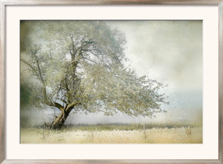 art com art prints