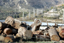 Photo of توزيع 370 طن أحطاب على المجتمع المحلي في عجلون وجرش