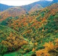 Parque natural de Fuentes del Narcea