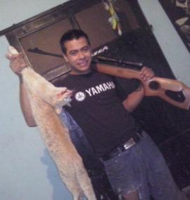 Mató el gato de su vecino y subió las fotos a Facebook