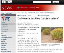 Kaktusdiebe in Palm Desert