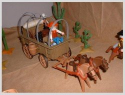 cactus_town