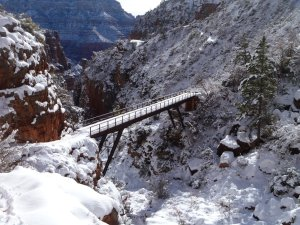Bridge in the Redwall Winter