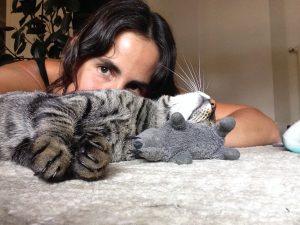 Convivir con un gato