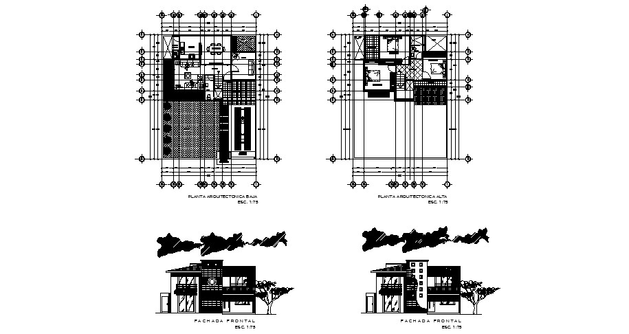Plan of 2 storey house 12.30mtr x 16.20mtr with section