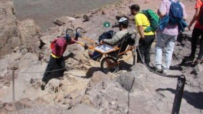 voluntarios-naturaleza-movilidad-proyecto-Naturaleza_941616916_110894219_667x375