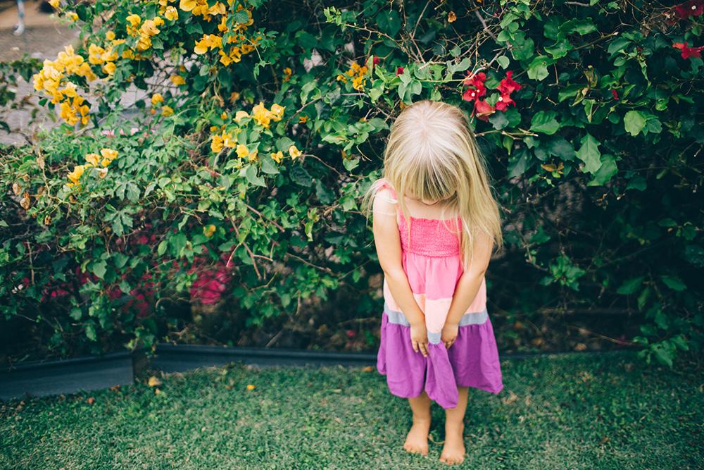 maui family photographer cadence photographs carey and family for tropical moms