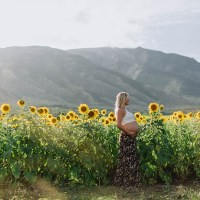 maui sunflower field | maternity photography | hawaii