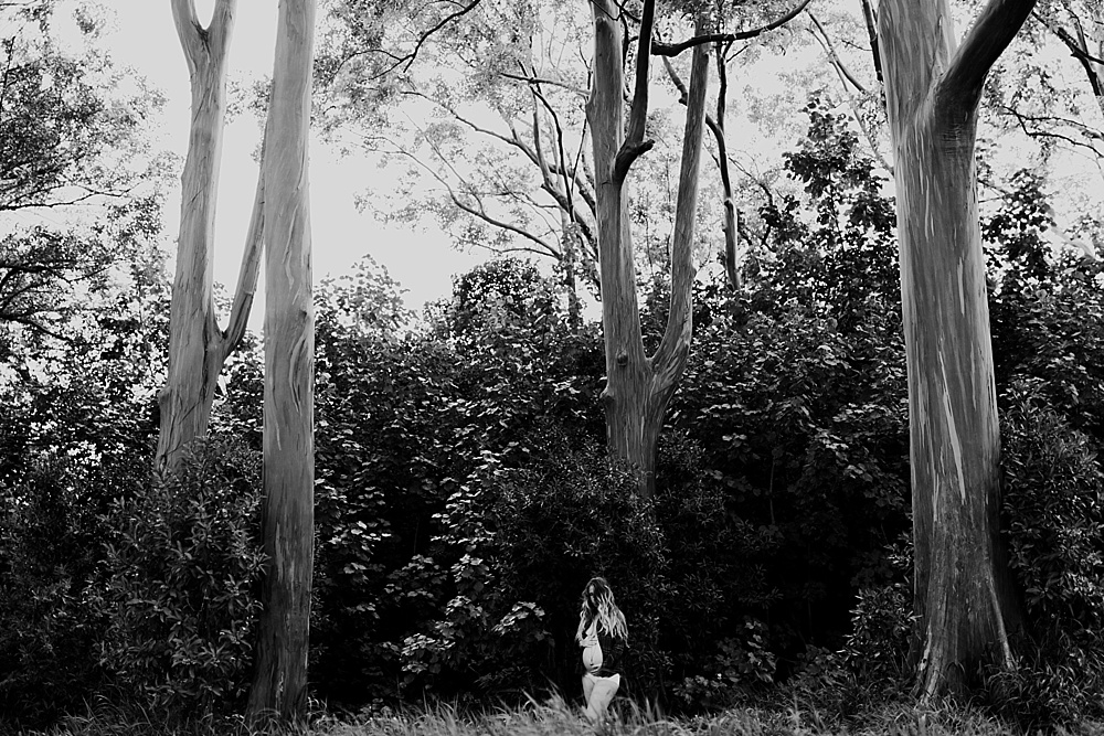 bamboo forest on maui maternity photography on the road to hana.