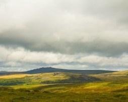 Landscape at Dartmoor